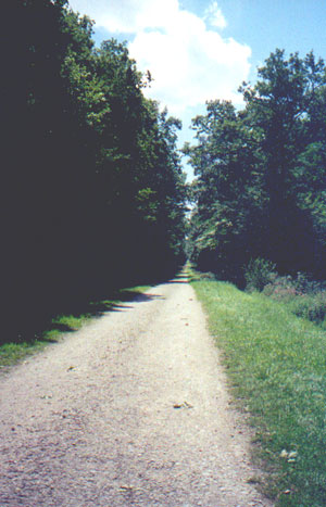 The bike path to Cheverny