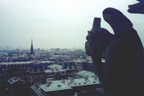 The view from the top of Notre Dame.