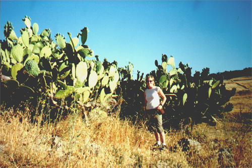 Katie Miller with cactus