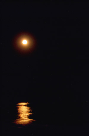 August 6, 2001: The beach at night